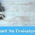 ✅Esenyurt Güzelyurt Mahallesi Su Tesisatçısı-Tesisatçı 30 TL