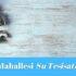✅Esenyurt Hürriyet Mahallesi Su Tesisatçısı-Tesisatçı 30 TL