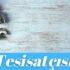 ✅Esenyurt İstiklal Mahallesi Su Tesisatçısı-Tesisatçı 30 TL
